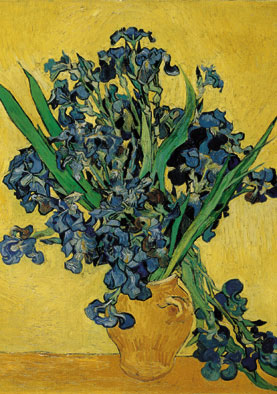 Wooden Jigsaw Puzzle - Blue Irises - 250 Pieces