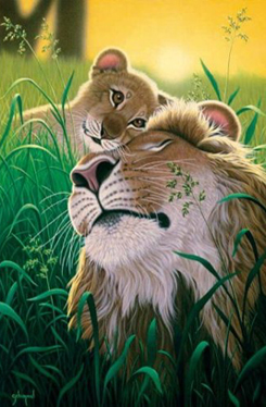 Jigsaw Puzzle - A Father's Love (Lions) - 500 Pieces Clementoni