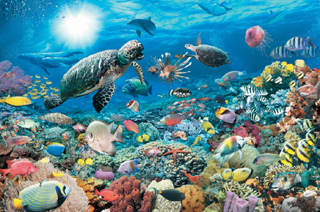 Jigsaw Puzzle - Underwater Tranquility - 5000 Pieces Ravensburger