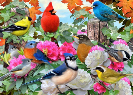 Wooden Jigsaw Puzzle - Birds For All Seasons - 500 Pieces Wentworth