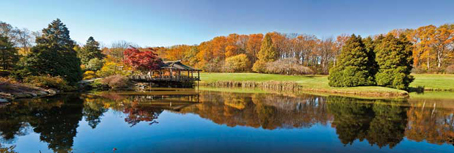 Jigsaw Puzzle - Fall in Maryland (Panoramic Image) (#39232) - 1000 Pieces  Clementoni