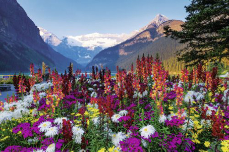 Jigsaw Puzzle - Flowery Mountains - 3000 Pieces Ravensburger