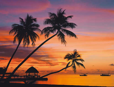 Jigsaw Puzzle Maldives At Sunset 32545 2000 Pieces