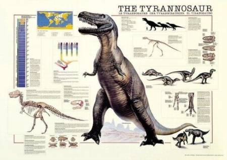 Jigsaw Puzzle - The Tyrannosaur (#2804N00029) - 1000 Pieces Ricordi