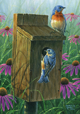 Wooden Jigsaw Puzzle - Two Blues (Birds) - 250 Pieces Wentworth