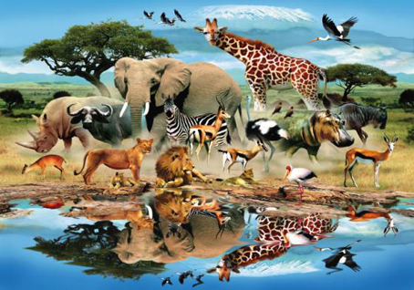 Wooden Jigsaw Puzzle - Watering Hole - 500 Pieces