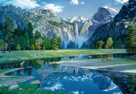Wooden Jigsaw Puzzle - Yosemite Spring (#782105) - 250 Pieces